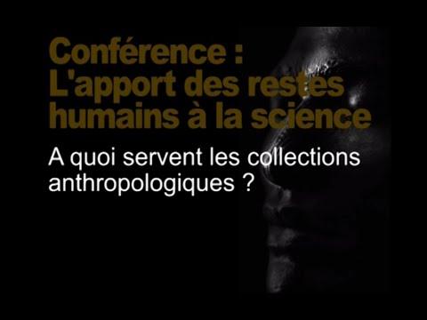 À quoi servent les collections anthropologiques ? (Restitution des têtes maories / tout public 1/3)