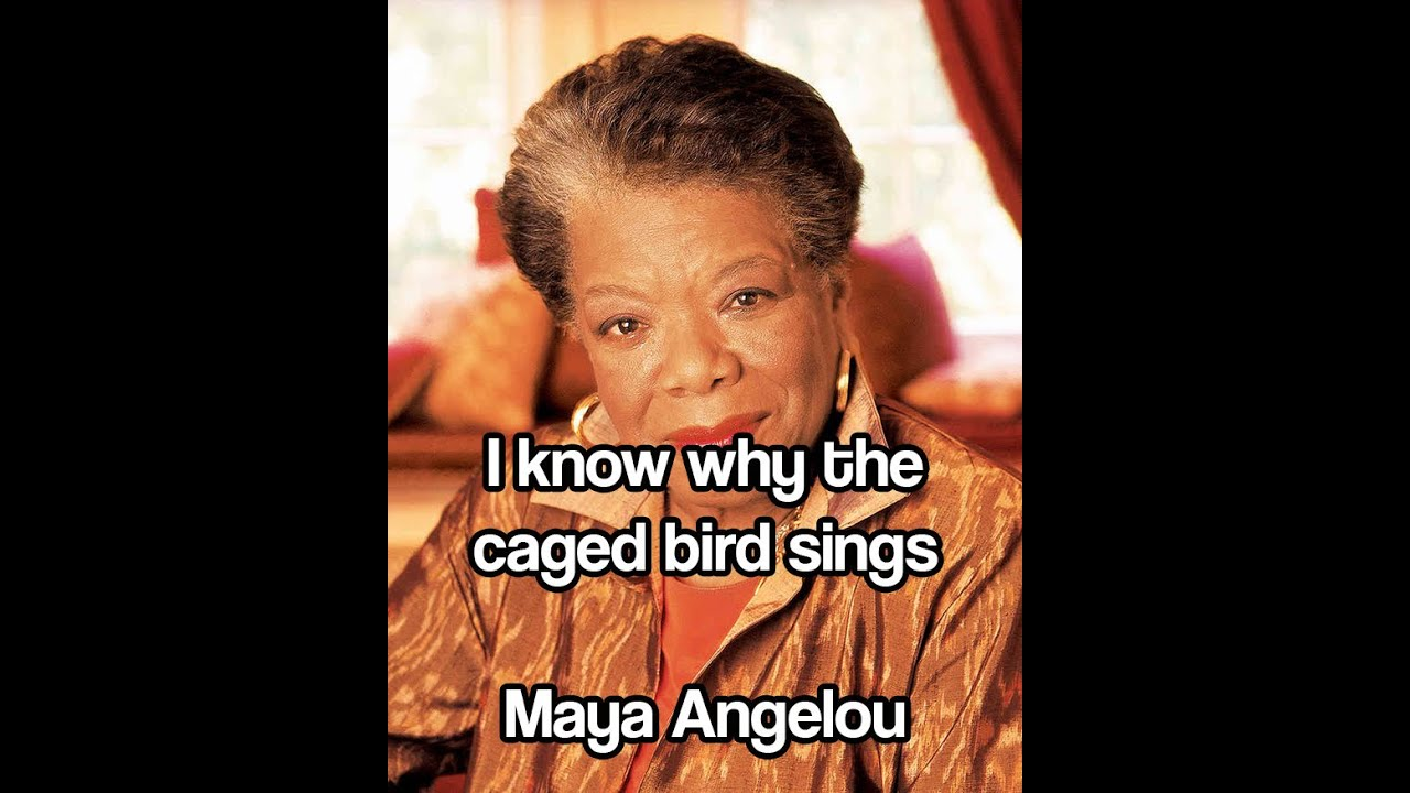 maya angelou as a caged bird Angelou tells us that she read widely as a child, saving her young and loyal passion for the african american poets paul laurence dunbar, langston hughes, and james weldon johnson, all of whose voices can still be heard in her own poetry dunbar, whom she cites first, provided her with her most.