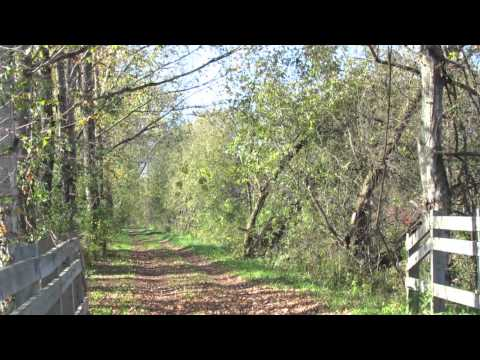 NYS Canalway trail from Utica to Stanwix (Rome) bicycle path