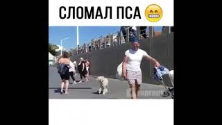Прикол.Напугал собаку до смерти