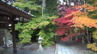 今高野山の紅葉 (世羅町 龍華寺)Autumn Colors in Japan temple