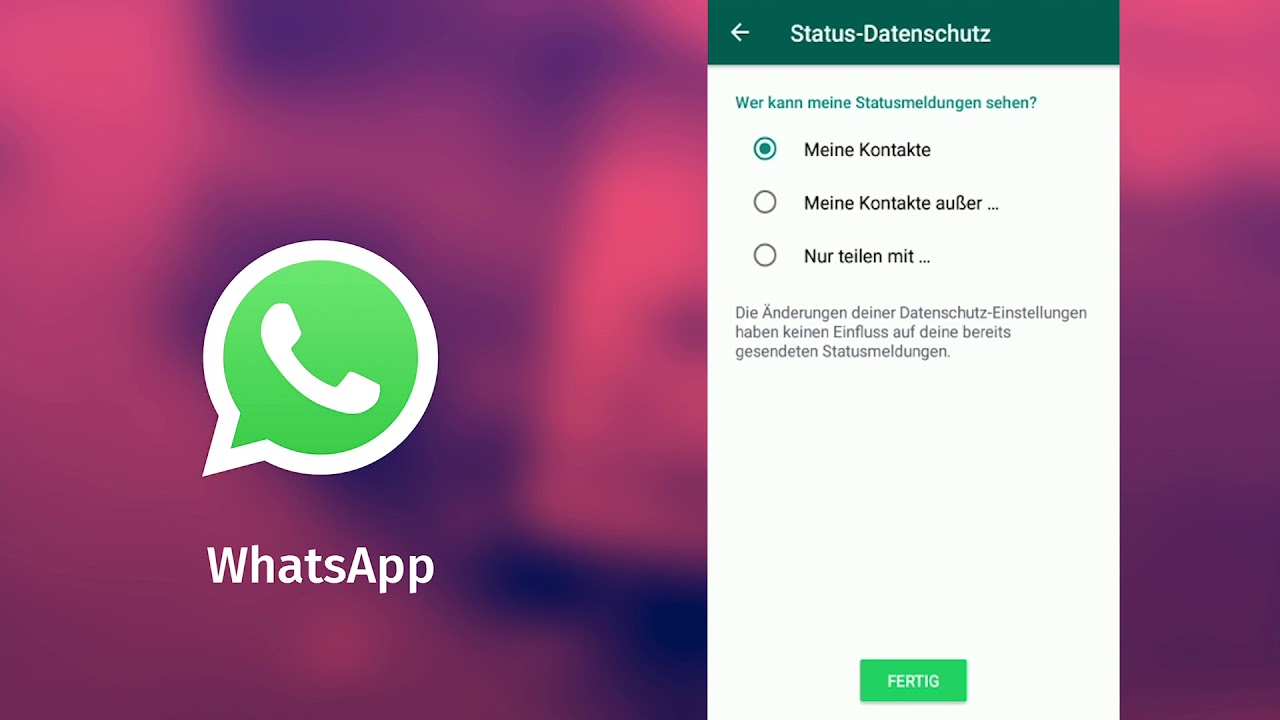 How To Privatsphäre Einstellen In Whatsapp Update 2019