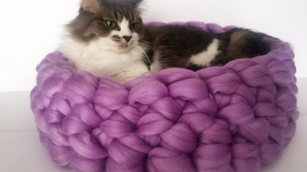 Hand Crochet Merino Cat Bed In Less Than 30 Minutes 10 Off Youtube