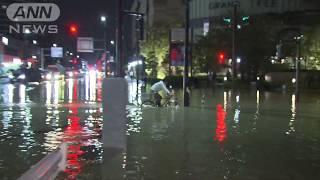 20191012 台風19号 多摩川 武蔵小杉【まいにち防災】