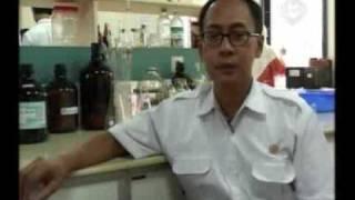 Obat Herbal Jantung, Batu Ginjal, Maag, Wasir, Ambeien, Benjolan Payudara, Prostat | Sarang Semut Papua Myrmecodia Pendans 30 Kapsul