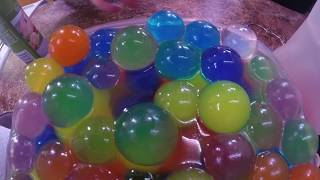 Large Orbeez Time lapse Satisfying