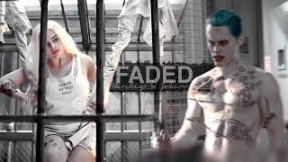 Video FADED || Harley & Joker download MP3, 3GP, MP4, WEBM, AVI, FLV Oktober 2018