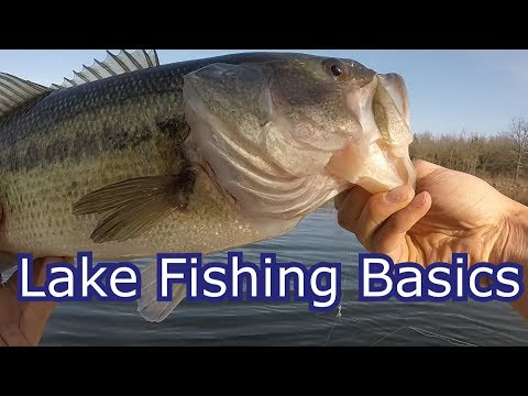 How To Start Fishing Any Lake for Beginners- Tips and Techniques