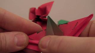 Skill: Medium - Folding The Petunia Flower