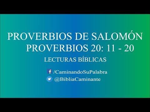 proverbios-20-versÍculos-11-al-20-|-lecturas-bÍblicas