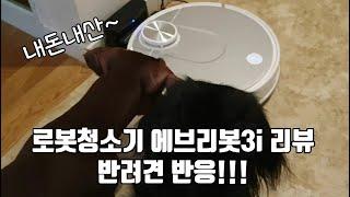로봇청소기 에브리봇 3i 물걸레 겸용 솔직리뷰ㅣ반려견 …