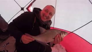 Karšių Žvejyba Žiemą