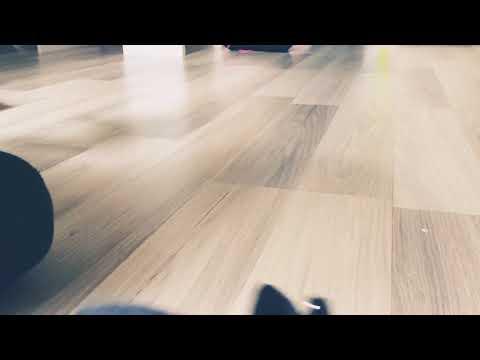 Koumfou chauve-souris 🦇 épisode # 2