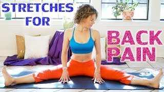 Low Back Pain Relief Exercises & Stretches - 20 Minute Easy Beginners Yoga Flexibility Workout