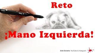 Reto: ¡Dibujar con la mano izquierda! (un Bulldog Francés)