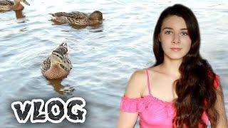 VLOG: моё питание, совместные покупки, кремлёвский пляж Великого Новгорода, утки