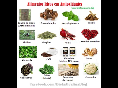 Dieta alcalina pdf download