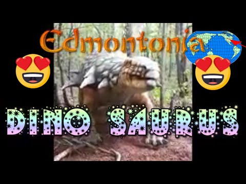 The Sound Effects of Edmontonia