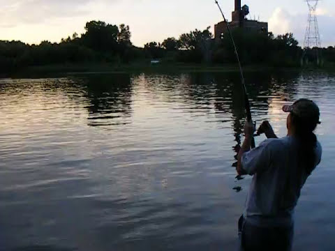 Huge catfish on mississippi river youtube for Mississippi out of state fishing license