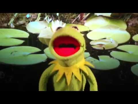Happy Birthday Nick, from your friend Kermit