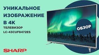"""Это """"акула"""" среди 4К-телевизоров (Sharp LC 43CUF8472ES)"""