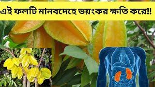 কামরাঙ্গা আপনার জন্য উপকারি না ক্ষতিকর জেনে নিন ।| Kamaranga fruit