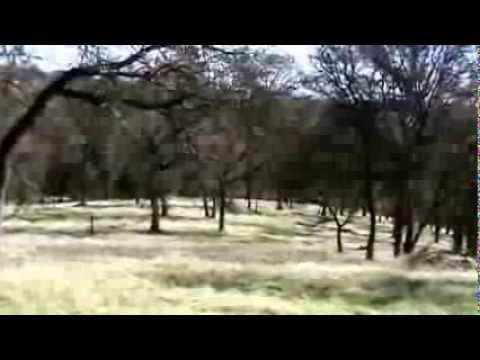 Spenceville Wildlife area California