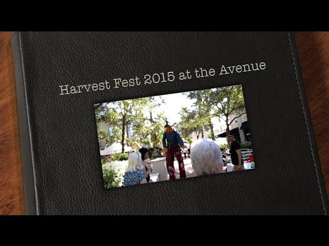 Viera Voice Harvest Fest 2015 at the Avenue Viera