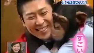 Реакция шимпанзе на фокусы