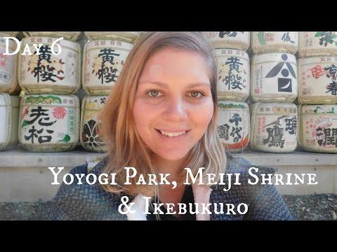 Tokyo Vlog: Day 6 Yoyogi Park, Meiji Shrine & Ikebukuro