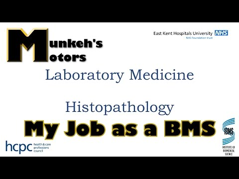 My Job - A Biomedical Scientist In Histopathology