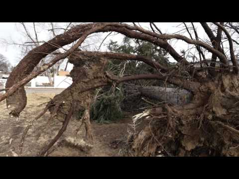 City officials react to wind damage in Colorado Springs