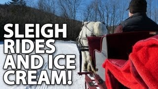 One-horse Open Sleigh Ride To Ben & Jerry's!