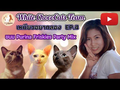 อาหารแมว Purina Friskies Party MiX ของโปรด น้องแมว | เหมียวอยากลอง EP.4