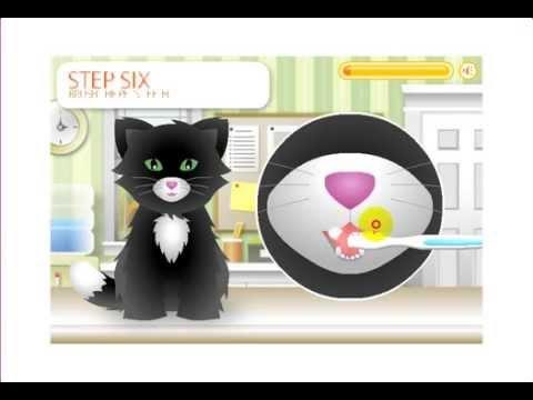 Pet Grooming Studio gameplay cartoon Уход за животными игра мультик