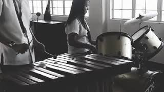 What Makes You Beautiful - One Direction (Marimba&Drums short cover)