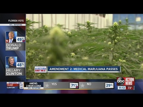 Medical marijuana gets approved in Florida, Solar energy rejected