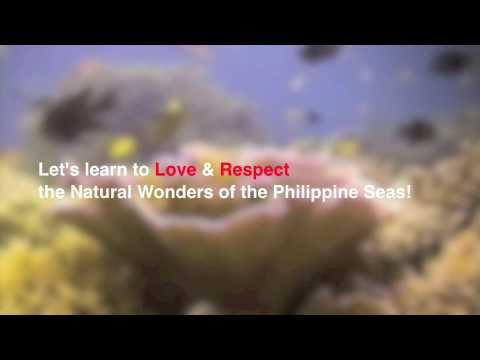 Finding Love Beneath The Philippine Seas