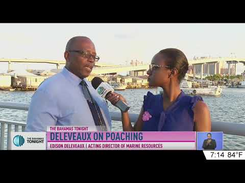 DIRECTOR OF MARINE RESOURCES ON POACHING IN THE BAHAMAS