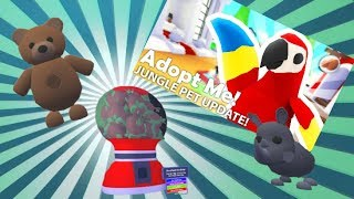 JUNGLE PETS IN ADOPT ME!?!!? | Roblox | Adopt Me |