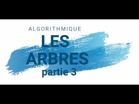 ASD : Les Arbres - Caractérisriques - Partie 3 (darija)