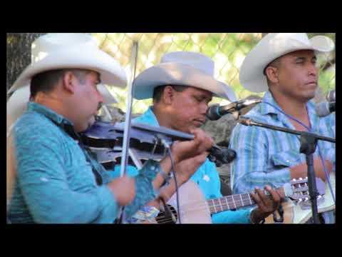 Fidel Cruz Y Los Primos De La Sierra - El Perico Loro