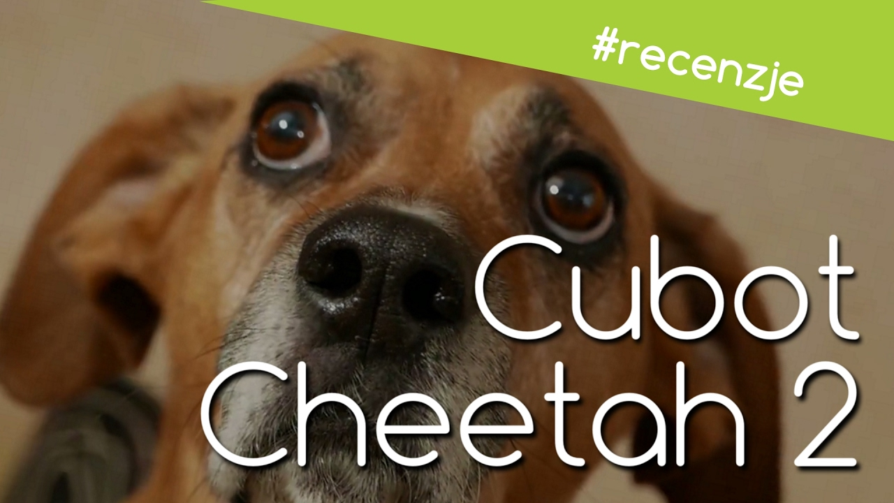 Cubot Cheetah 2 Recenzja Test Opinie Review Youtube