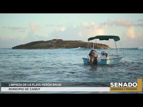 Limpieza de la Playa Peñón Brusi  en Camuy