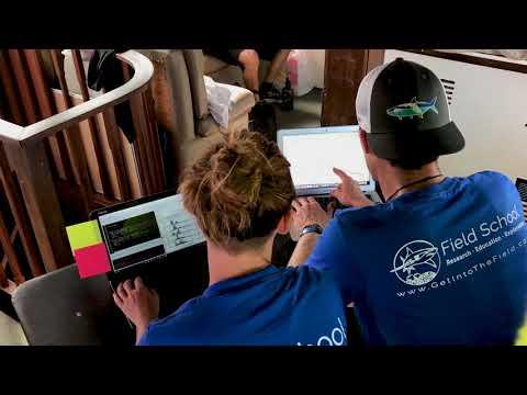 R @ Sea Immersive Workshop in R for Ecological Modeling