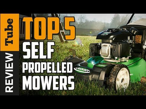 ✅Lawn Mower: Best lawn mower (Buying guide)