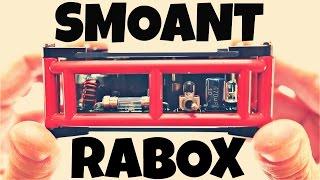 SMOANT RABOX!! A Back To The Future Vape!