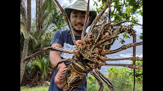 Catch and Cook LOBSTER  Diving with HAWAII NATIVES!!