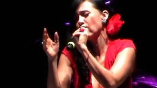 Susana Zabaleta - La gata bajo la lluvia. Fiestas del Pitic ...