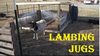 How to Build Lambing Jugs